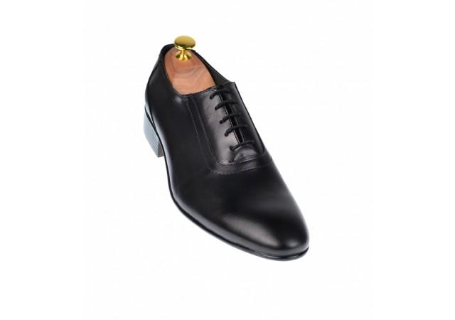 Pantofi barbati lux - eleganti din piele naturala  - ELION9N