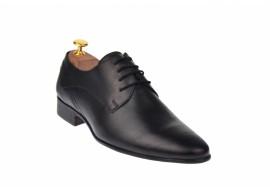 Pantofi barbati eleganti din piele naturala Massimo, Dyany Shoes - 555N