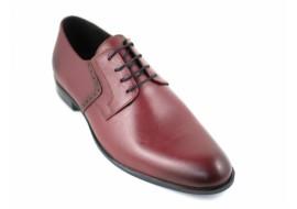 Pantofi barbati eleganti din piele naturala BORDO - Model ROSETYVIS